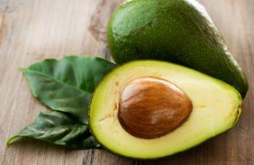 Abacate e seus benefícios