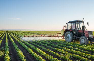 Entenda Por Que Sinop Possui o Melhor Setor Agrícola do País