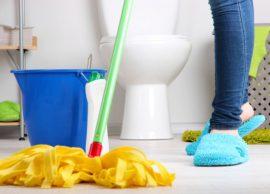 De casa Para casa – A limpeza do Banheiro