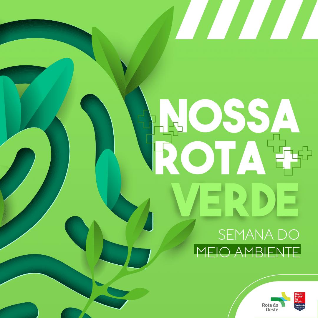 BR-163 está entre as 5 rodovias com melhor desempenho ambiental do Brasil