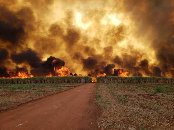 PÂNICO: Incêndio de grandes proporções deixa clima de fim mundo 3
