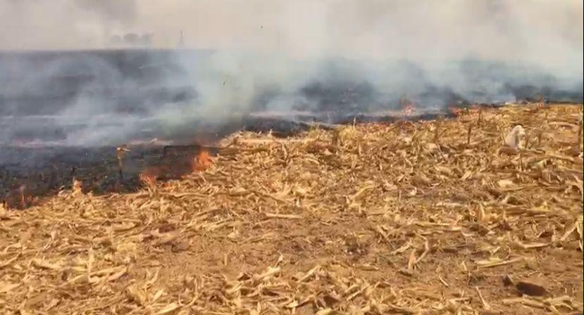 URGENTE: Incêndios de grandes proporções causam pavor na população sinopense 10