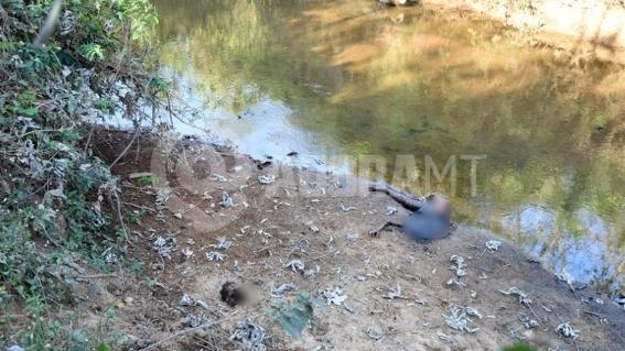 Corpo com cabeça arrancada é encontrado as margens de Rio 6